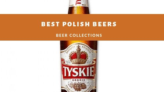 BEST POLISH BEERS